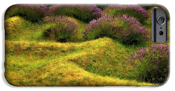 Mounds Digital iPhone Cases - Lavender Fields iPhone Case by Michelle Calkins