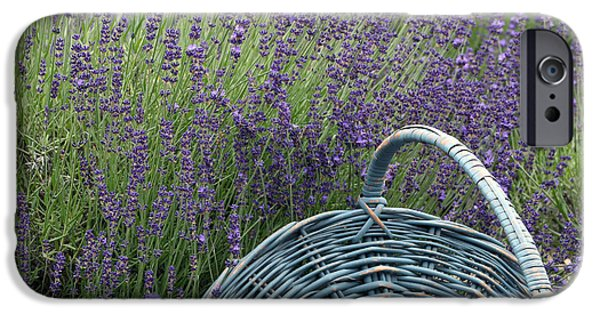 Lavender Pyrography iPhone Cases - Lavender Fields iPhone Case by Patricia Innes