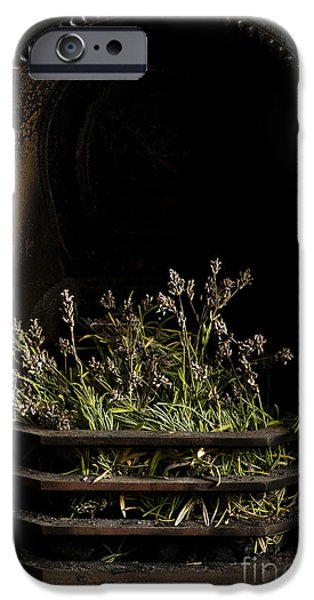 United iPhone Cases - Lavender Fire iPhone Case by Anne Gilbert