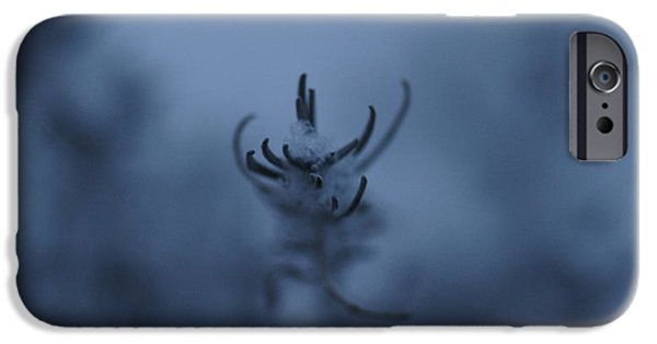 Nature Abstract iPhone Cases - Lavender in Snow iPhone Case by Crystal Harman