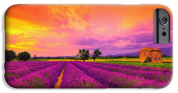 Provence Photographs iPhone Cases - Lavender Sunset iPhone Case by Midori Chan