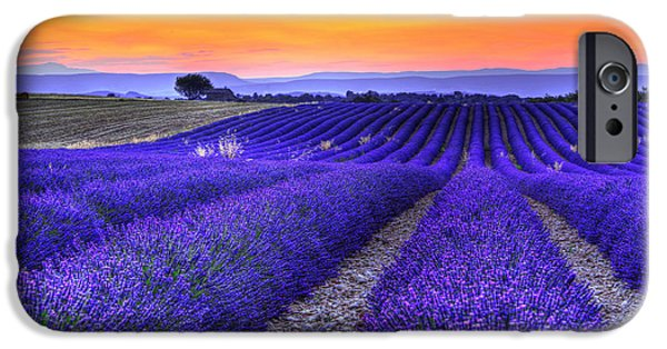 Provence Photographs iPhone Cases - Lavenders sunset iPhone Case by Midori Chan