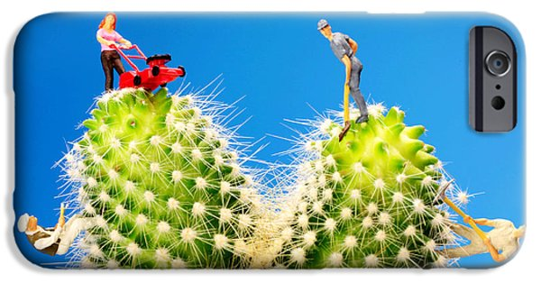 Mower iPhone Cases - Lawn mowing on cactus II iPhone Case by Paul Ge