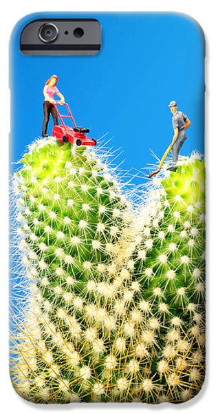 Mower iPhone Cases - Lawn mowing on cactus iPhone Case by Paul Ge