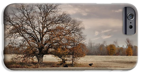 Fall Scenes iPhone Cases - Lazy Autumn Day - Farm Landscape iPhone Case by Jai Johnson