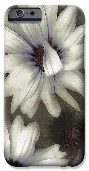 Lazy Daisies iPhone Case by Bonnie Bruno