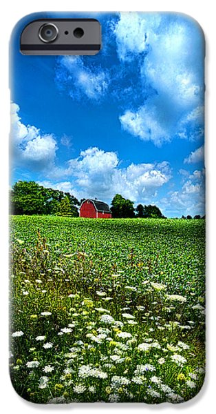 Crops iPhone Cases - Lazy Days of Summer iPhone Case by Phil Koch