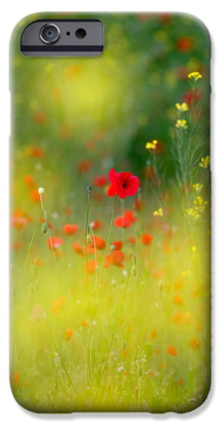 Bokeh iPhone Cases - Le Coeur iPhone Case by Roeselien Raimond