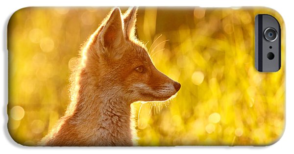 Red iPhone Cases - Le Ptit Renard iPhone Case by Roeselien Raimond