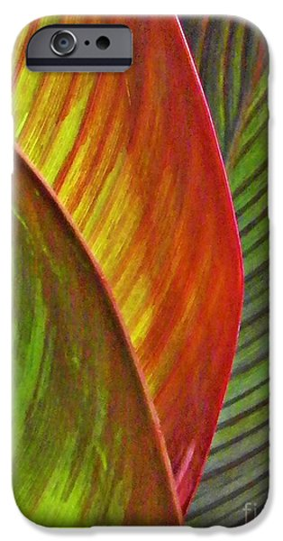 Business Photographs iPhone Cases - Leaf Abstract 3 iPhone Case by Sarah Loft