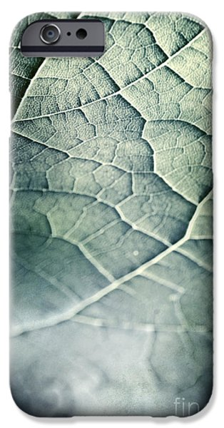 Strange iPhone Cases - Leaf Abstract iPhone Case by HD Connelly