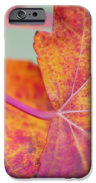 Leaf Abstract in Pink iPhone Case by Irina Wardas