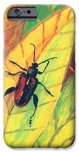 Sheets Glass Art iPhone Cases - Leaf Surfer iPhone Case by Anna Skaradzinska