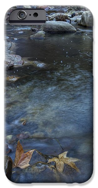 West Fork iPhone Cases - Leaf Swirls iPhone Case by Sue Cullumber