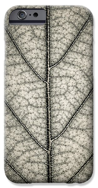Young iPhone Cases - Leaf texture iPhone Case by Elena Elisseeva