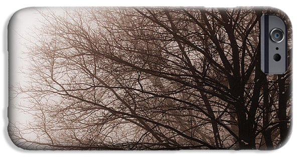 Snow Scene iPhone Cases - Leafless tree in fog iPhone Case by Elena Elisseeva