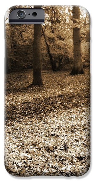 Leafy Autumn Woodland in Sepia iPhone Case by Natalie Kinnear