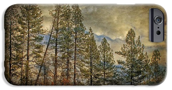 Pines Pyrography iPhone Cases - Lean On Me iPhone Case by Harlean Hansen