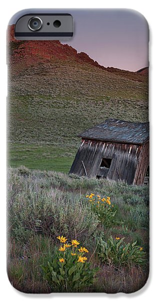 Leaning Shed iPhone Case by Leland D Howard
