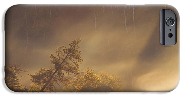 Jordan iPhone Cases - Leaning Tree in Swirling Fog iPhone Case by Larry Ricker