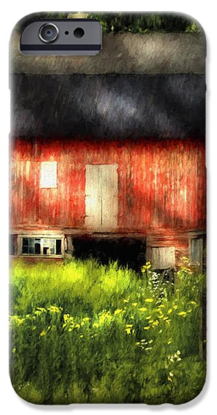 Leave Our Farms iPhone Case by Lois Bryan
