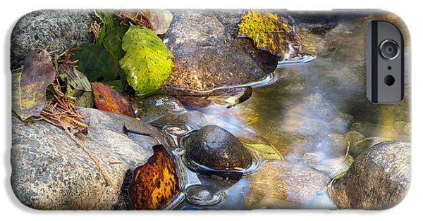 Autumn Leaf On Water iPhone Cases - Leaves and Needles iPhone Case by Sharon  Talson