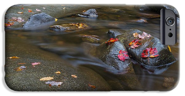Day iPhone Cases - Leaves on the River Path iPhone Case by Andres Leon