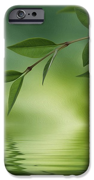 Leaves reflecting in water iPhone Case by Aged Pixel