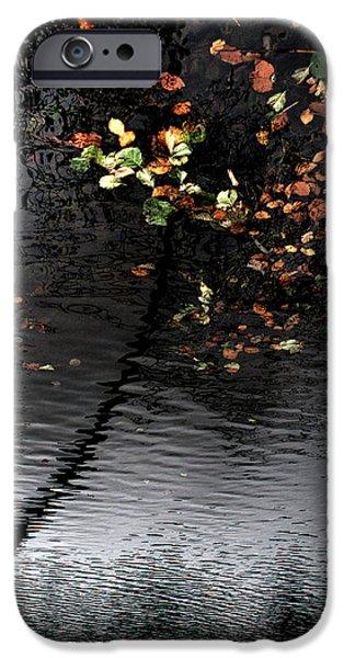 Reverse Art iPhone Cases - Leaves UnFallen iPhone Case by Daniel Zrno