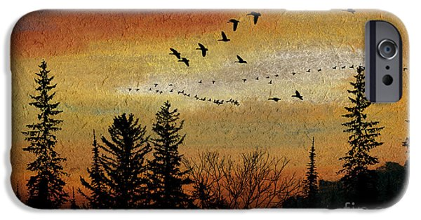 Dark Skies Pastels iPhone Cases - Leaving the North Behind iPhone Case by R Kyllo