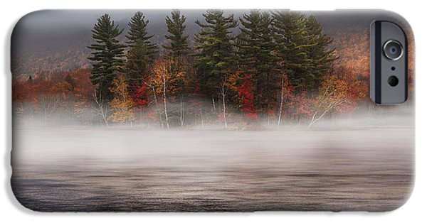 Tree Reflection iPhone Cases - Lefferts Pond iPhone Case by Magda  Bognar