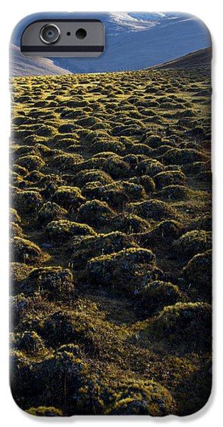 Lichens iPhone Cases - Lemmings iPhone Case by Aaron S Bedell