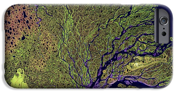 Nature Study iPhone Cases - Lena River Delta iPhone Case by Adam Romanowicz