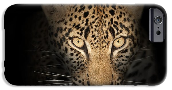 Close-up Photographs iPhone Cases - Leopard In The Dark iPhone Case by Johan Swanepoel