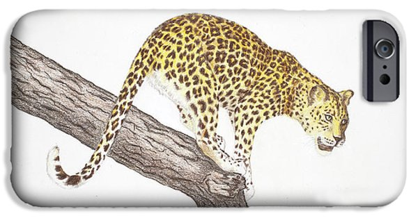 Beautiful Cat Drawings iPhone Cases - Leopard on the tree iPhone Case by Dag Sla