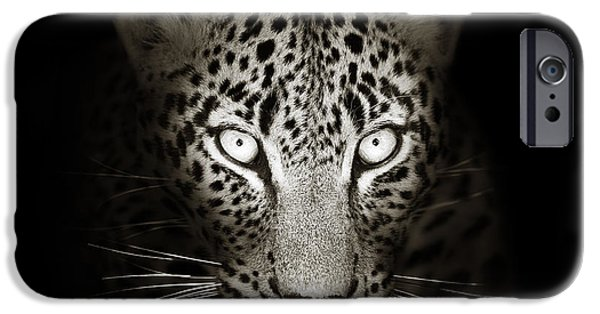 Monotone iPhone Cases - Leopard portrait in the dark iPhone Case by Johan Swanepoel