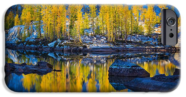 Reflecting iPhone Cases - Leprechaun Tamaracks iPhone Case by Inge Johnsson