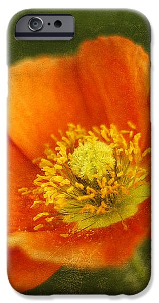 Les Fleurs iPhone Case by Darren Fisher