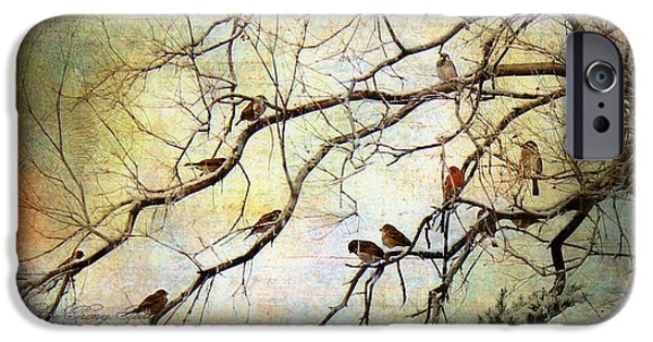 Wintertime iPhone Cases - Les Petits Oiseaux  iPhone Case by Barbara Chichester