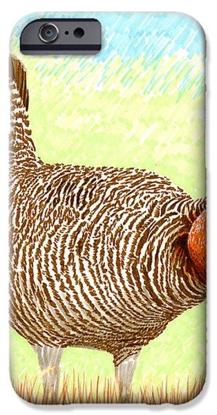 Lesser Prairie Chicken iPhone Case by Jack Pumphrey