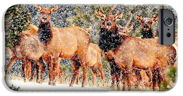 Barbara Chichester Digital iPhone Cases - Let it Snow - Barbara Chichester iPhone Case by Barbara Chichester