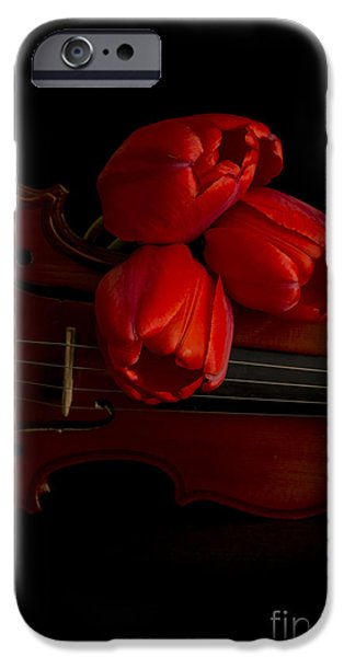Florals iPhone Cases - Let Us Make Beautiful Music Together iPhone Case by Edward Fielding