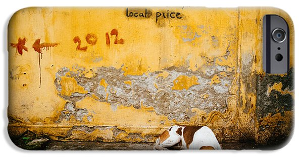 Stray iPhone Cases - Letting Sleeping Dogs Lie iPhone Case by Dean Harte