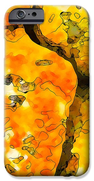 Modern Abstract iPhone Cases - Lichen Abstract 1 iPhone Case by Bill Caldwell -        ABeautifulSky Photography