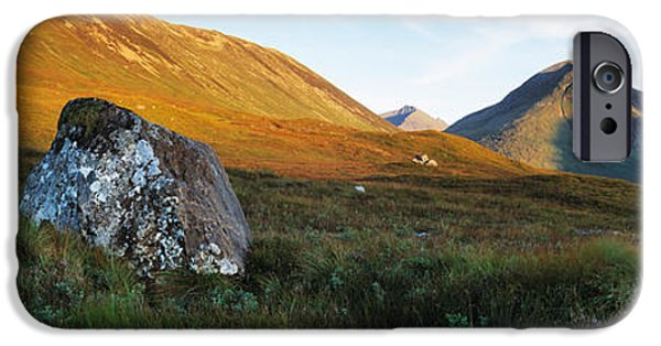 Lichens iPhone Cases - Lichen Covered Rock In A Field, Glen iPhone Case by Panoramic Images