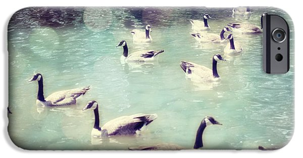 Swans... Photographs iPhone Cases - Life Is But a Dream iPhone Case by Amy Tyler