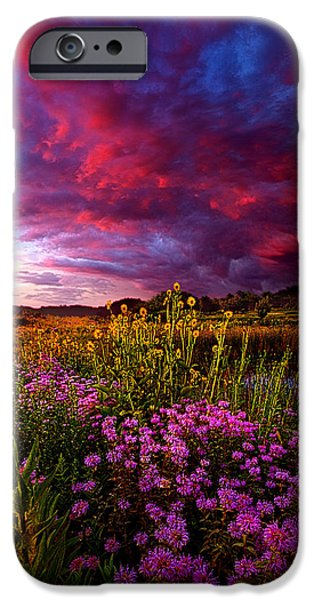 Meadow iPhone Cases - Life Love and Hope iPhone Case by Phil Koch
