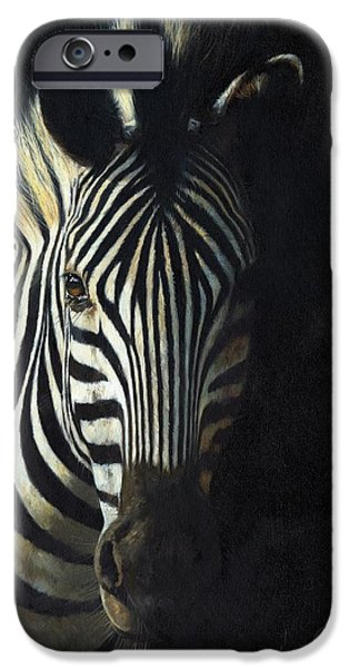 Zebra iPhone Cases - Light and Shade iPhone Case by David Stribbling