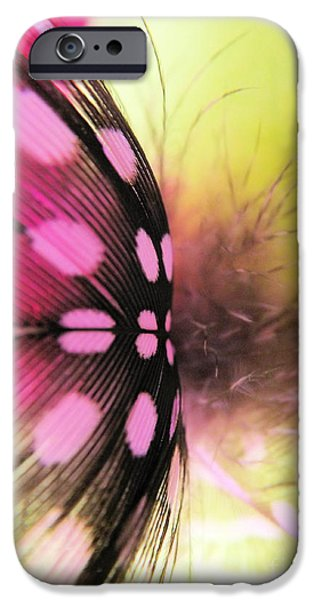 Business Photographs iPhone Cases - Light As A Feather iPhone Case by Robyn King