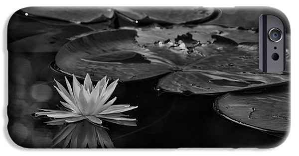 Lilly Pads iPhone Cases - Light In The Darkness iPhone Case by Deborah Benoit
